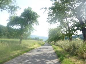 Verwunschene Fahrradwege bei Eschwege