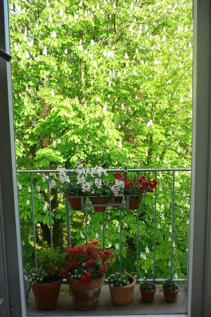Mathilde mag den sommerlichen Balkon