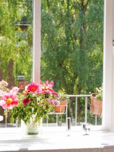 Mathildes Blumen im Sonnenschein