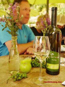 Wein zum Nachdenken - Mathilde MAG